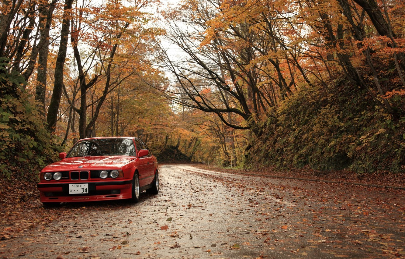 Photo wallpaper autumn, leaves, BMW, bmw. red