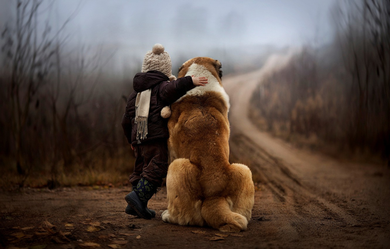 Photo wallpaper road, autumn, forest, nature, fog, child, dog, boy