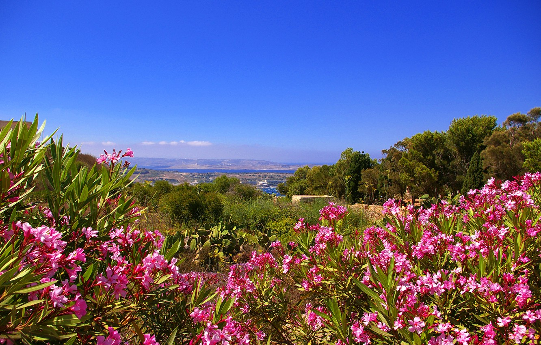 Photo wallpaper the sky, flowers, mountains, island, Malta, Gozo