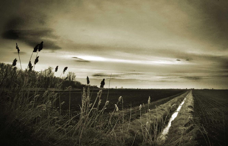Photo wallpaper road, longing, dark