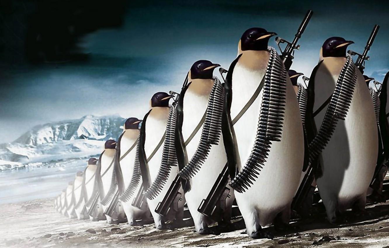Photo wallpaper gun, ice, fantasy, weapon, army, animal, rifle, ammunition, the Antarctic, penguins