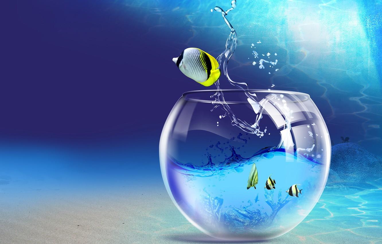 Photo wallpaper water, fish, aquarium, 150