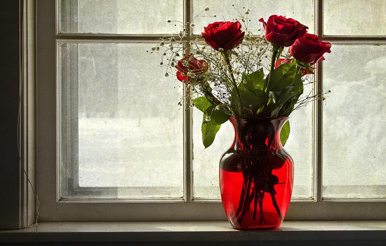 Photo wallpaper winter, flowers, roses, window, vase