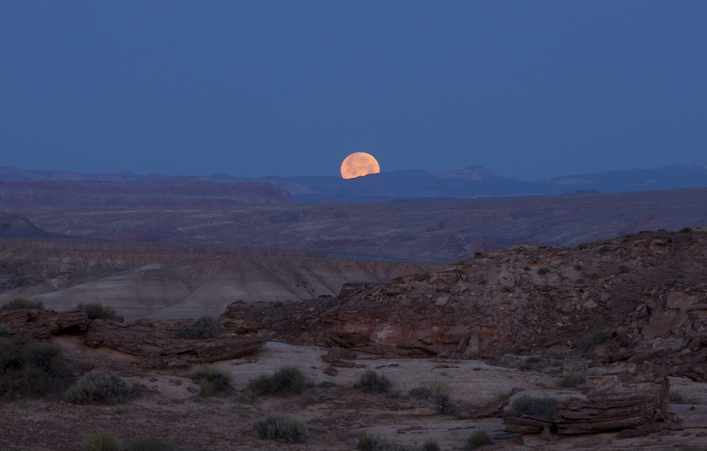 Photo wallpaper night, the moon, desert, photographer, Utah, USA, national Park, canyons, state, full, jeff mitton, Jeff …