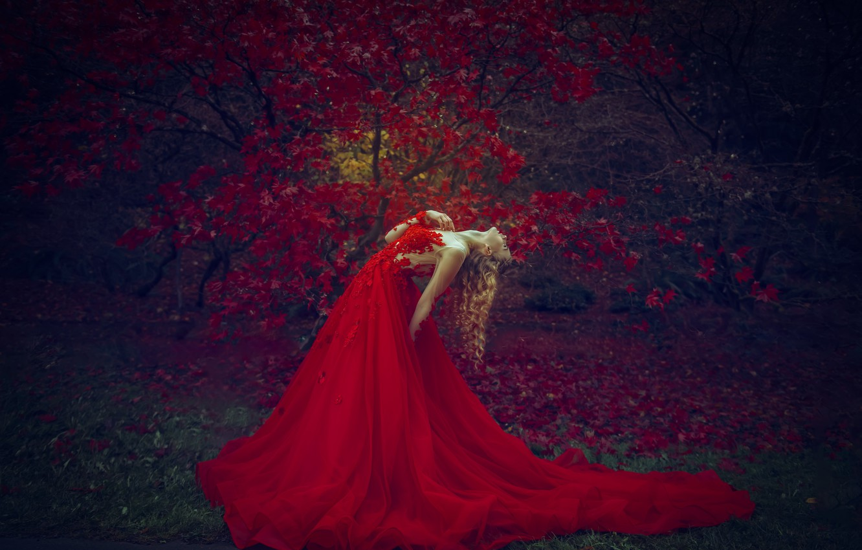 Photo wallpaper girl, nature, tree