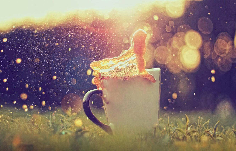 Photo wallpaper grass, glare, splash, Cup, bokeh, caramel