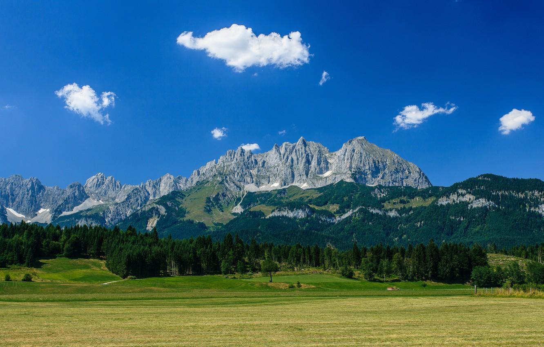 Photo wallpaper forest, mountains, Austria, Alps, meadow, Austria, Alps, mountain Wilder Kaiser, Wilder Kaiser