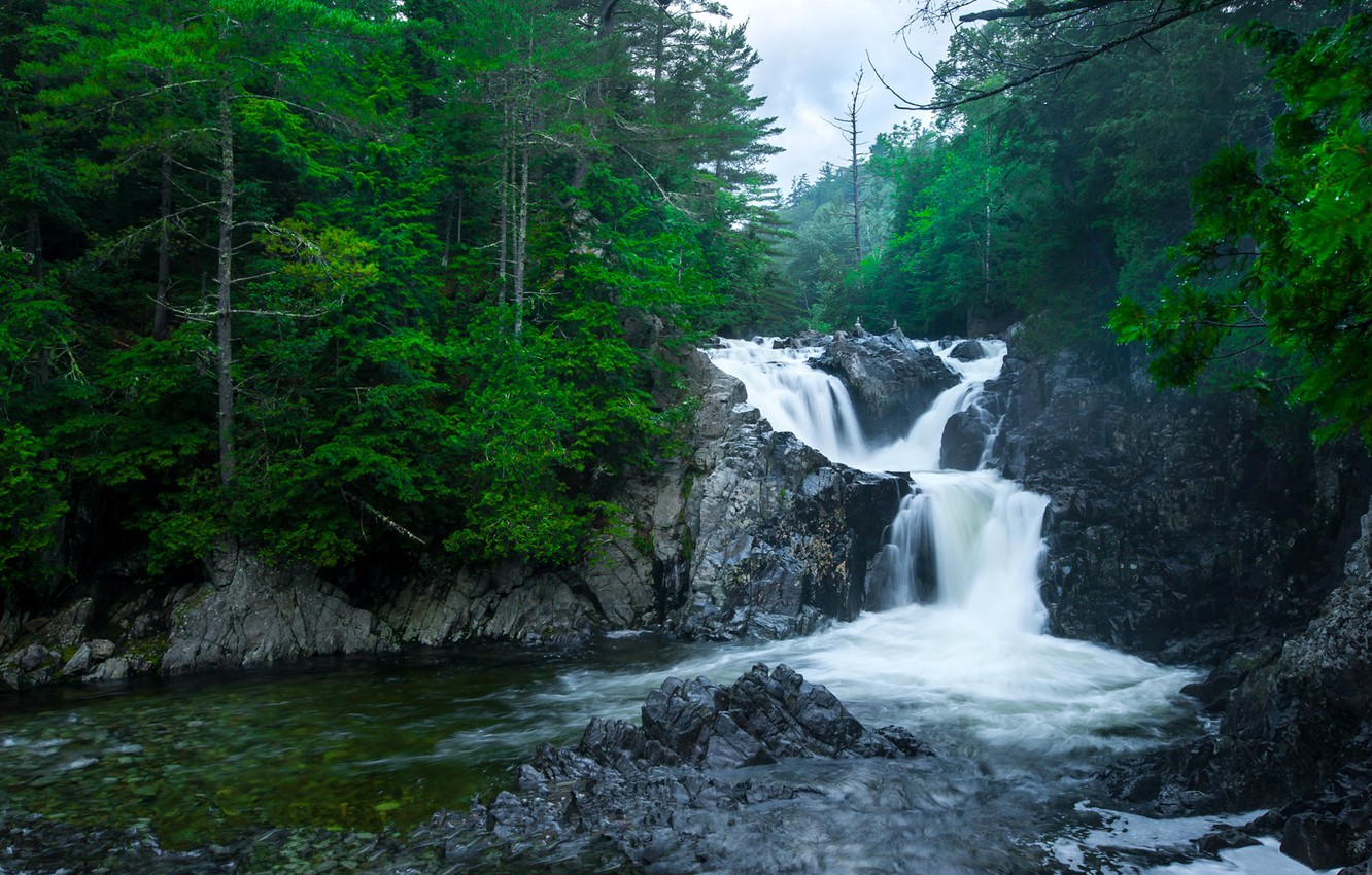 Photo wallpaper forest, the sky, clouds, trees, river, stones, rocks, waterfall, thresholds