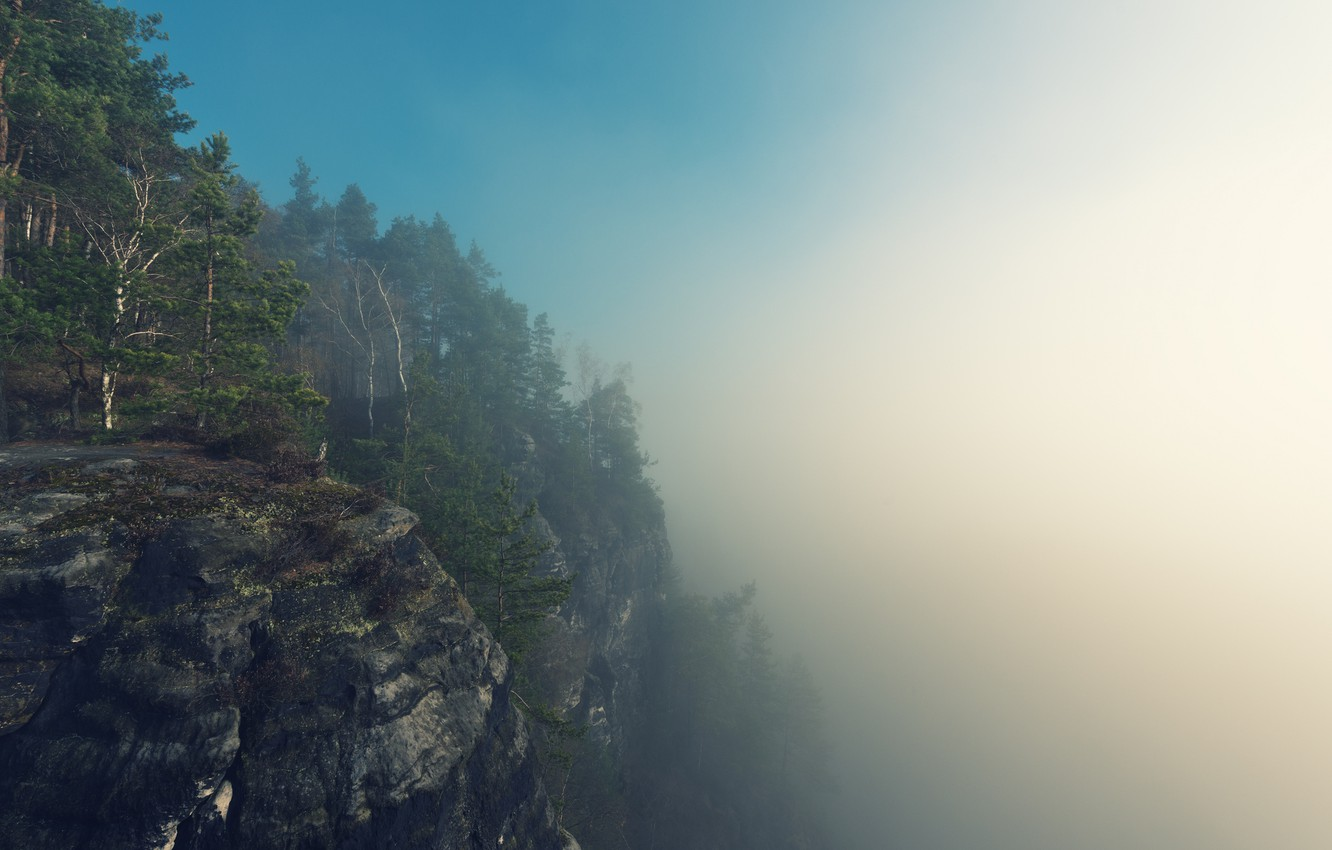 Photo wallpaper forest, summer, the sky, trees, mountains, fog, rocks, morning