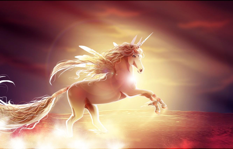 Photo wallpaper sunset, horse, wings, unicorn