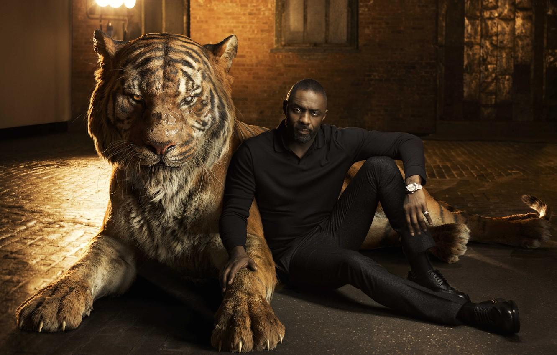 Photo wallpaper tiger, actor, Idris Elba, Idris Elba, The Jungle Book, voice, The jungle book, Shere Khan