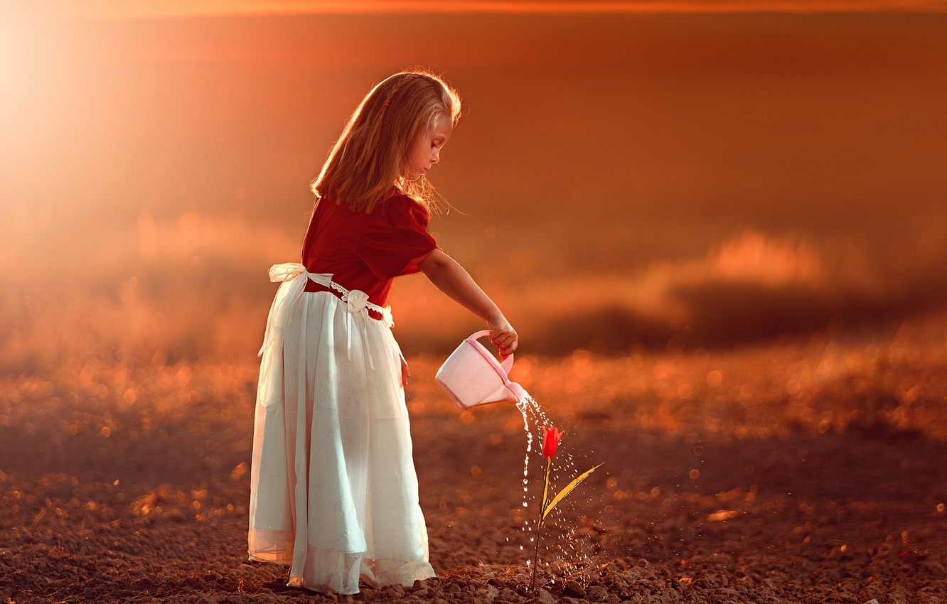 Photo wallpaper flower, sunset, Tulip, girl, lake