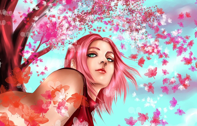 Photo wallpaper girl, tree, Sakura, art, naruto, pink hair, haruno sakura, hisokakakashi