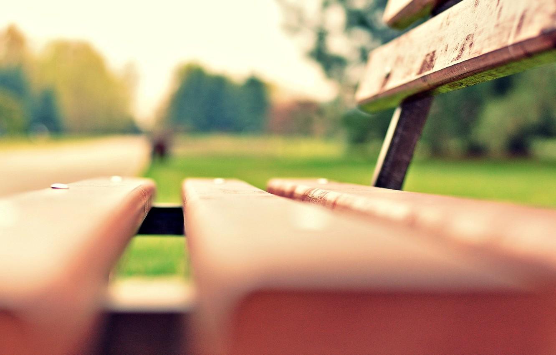 Photo wallpaper greens, grass, macro, bench, Park, background, widescreen, Wallpaper, blur, meadow, shop, shop, wallpaper, bench, widescreen, …