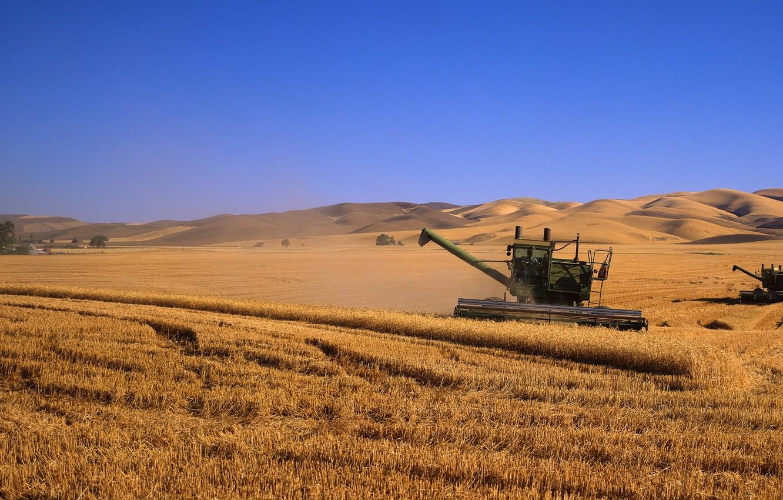 Photo wallpaper field, harvest, kombain