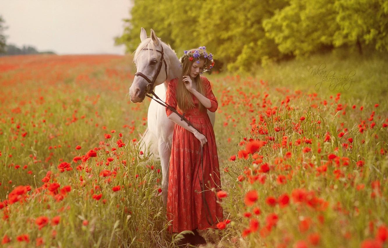Photo wallpaper field, girl, nature, mood, horse, Maki