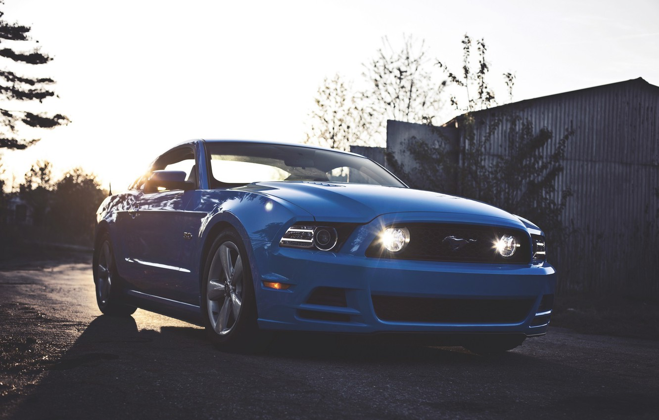 Photo wallpaper Mustang, Ford, Ford, Muscle, Mustang, Car, Blue, 5.0
