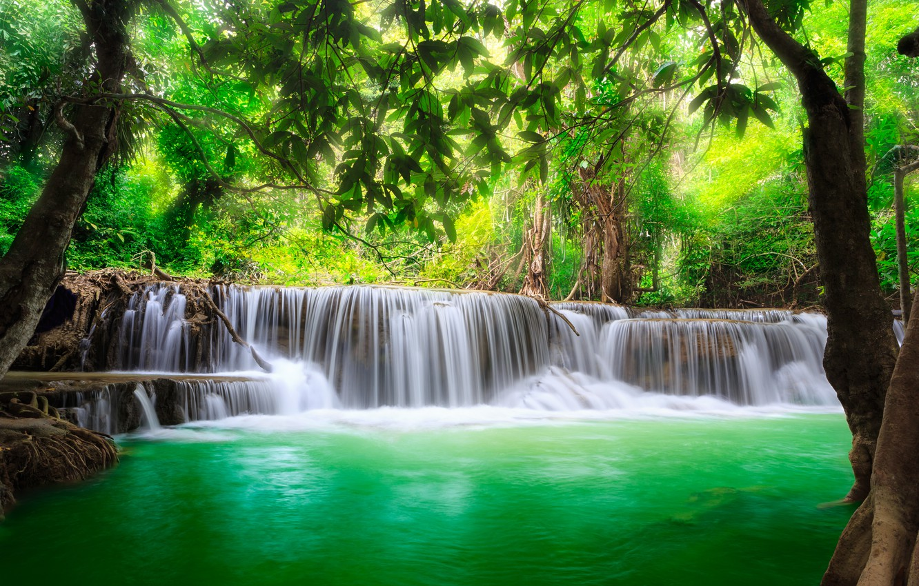 Photo wallpaper waterfall, forest, river, water, waterfall, flow, emerald