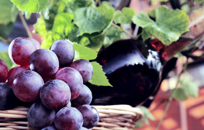 Photo wallpaper berries, wine, basket, bottle, grapes, bunch