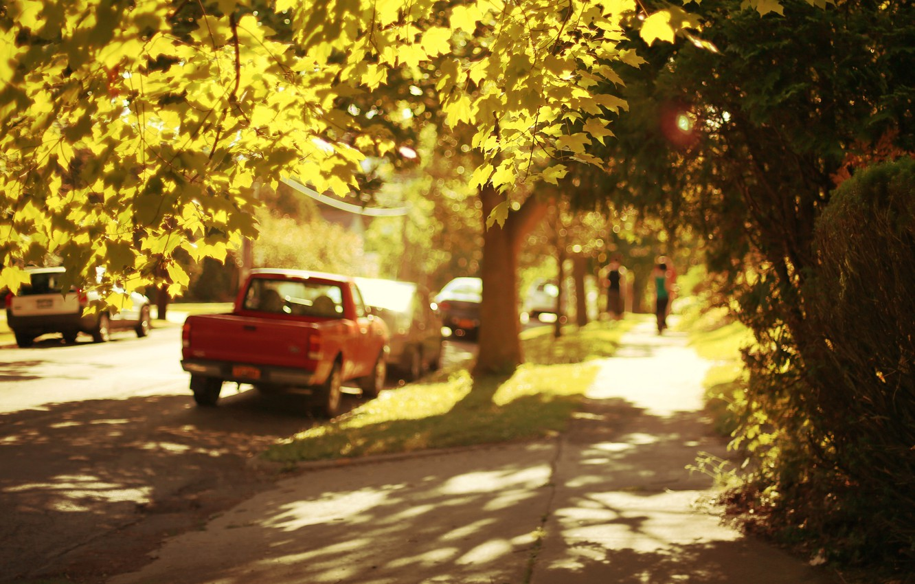 Photo wallpaper machine, leaves, the sun, trees, machine, nature, the city, background, people, tree, widescreen, Wallpaper, street, …