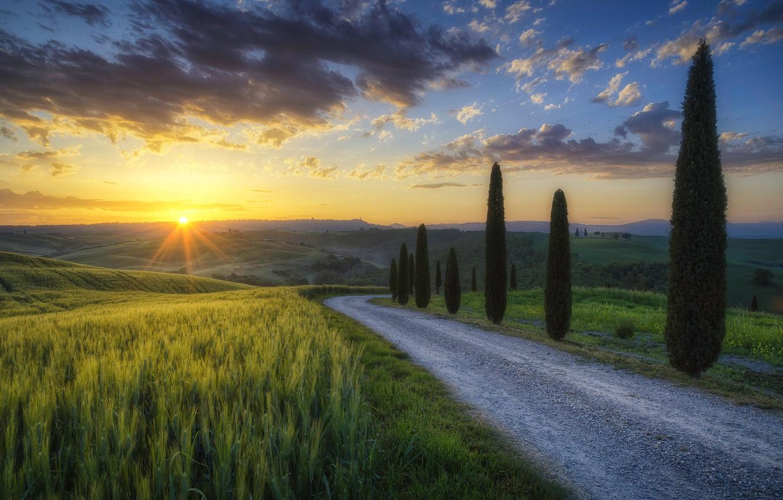 Photo wallpaper road, the sun, rays, light, trees, field, morning, Italy, cypress, Tuscany