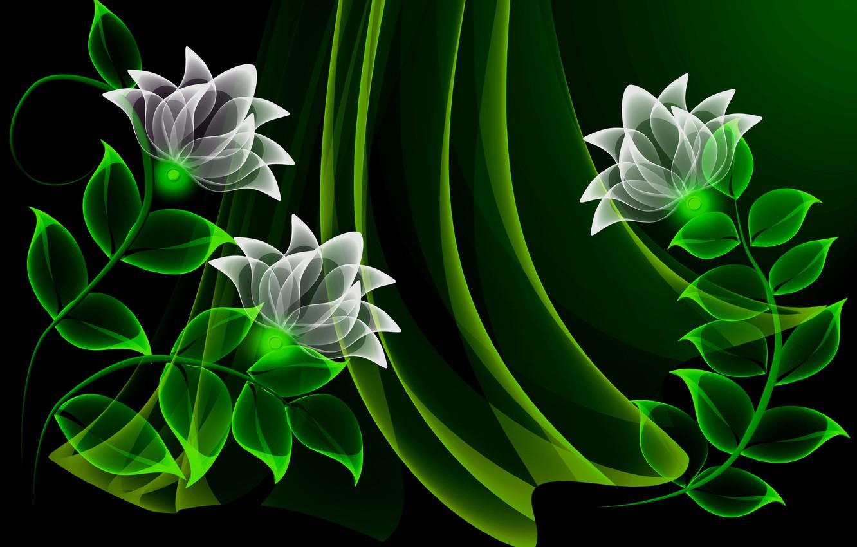 Photo wallpaper flowers, vector, flowers, background, neon, neon