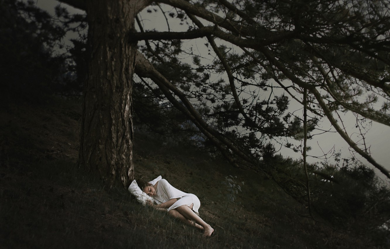 Photo wallpaper girl, night, tree