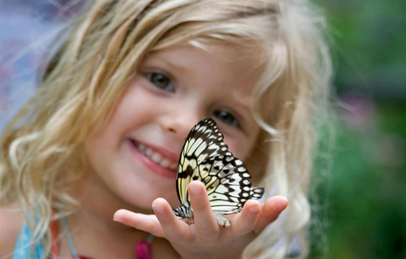 Photo wallpaper insects, children, background, Wallpaper, butterfly, mood, child, blonde, girl, curls