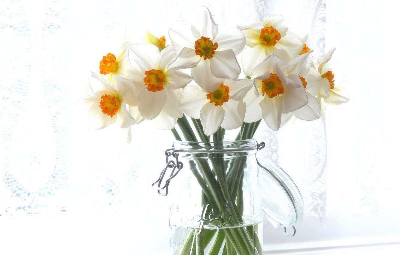 Photo wallpaper bouquet, Bank, daffodils