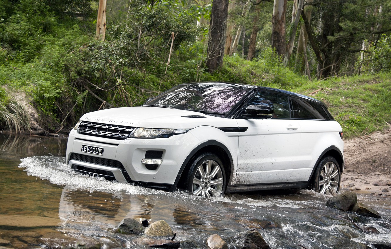 Photo wallpaper forest, white, trees, stones, coupe, jeep, speaker, Land Rover, range rover, coupe, the front, crossover, …