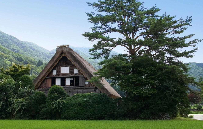 Photo wallpaper Greens, Nature, Tree, Mountains, House