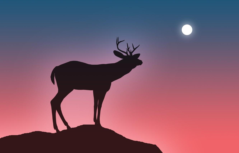 Photo wallpaper the sky, open, jump, the moon, deer, horns, abyss, silhouette, haze