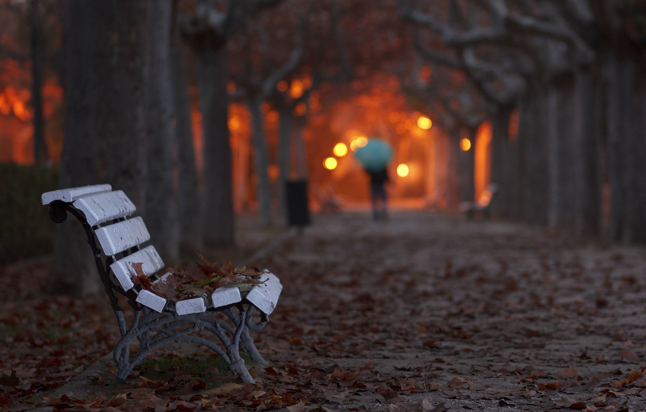 Photo wallpaper leaves, bench, the evening, Autumn, lights