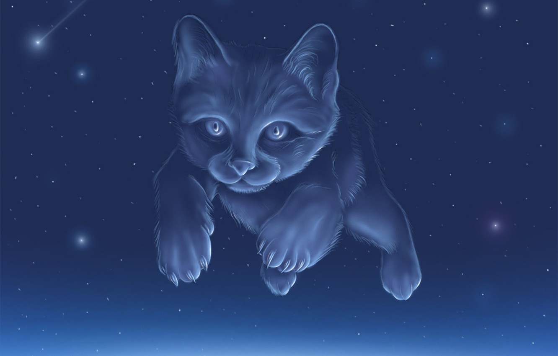 Photo wallpaper the sky, cat, constellation