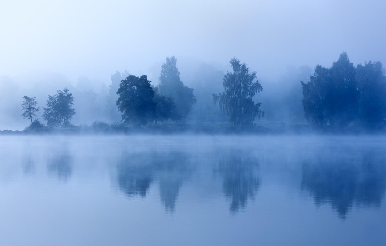 Photo wallpaper trees, fog, lake, morning, twilight