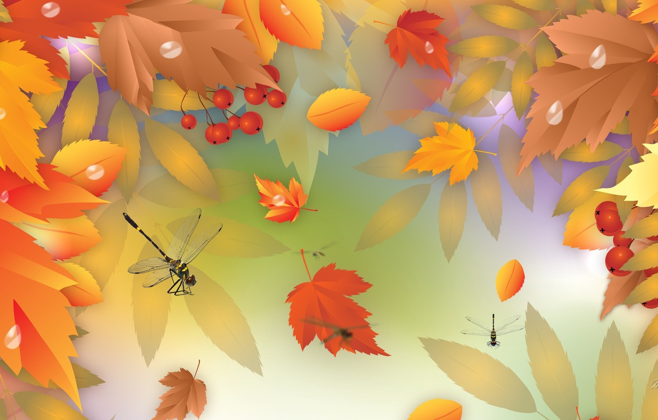 Photo wallpaper autumn, leaves, berries, vector, dragonfly