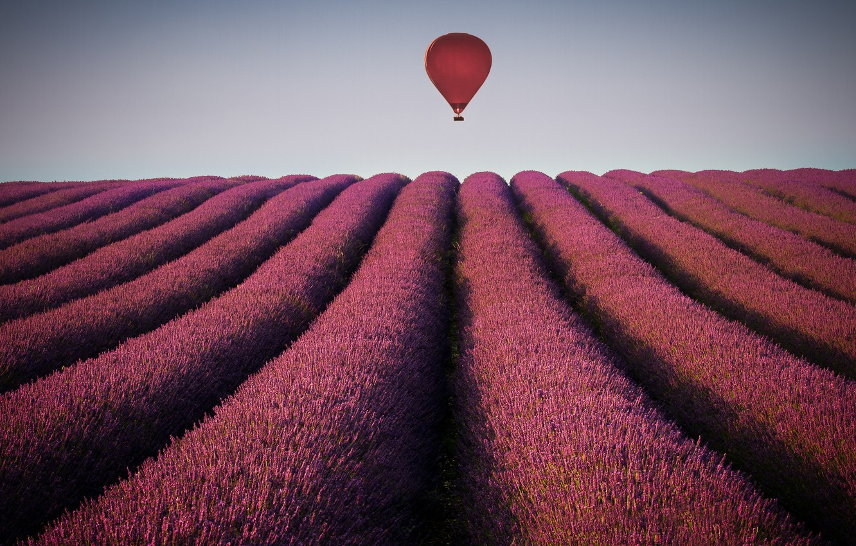 Photo wallpaper field, the sky, balloon, horizon, lavender