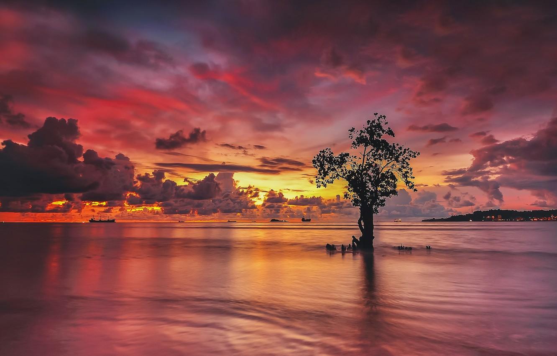 Photo wallpaper clouds, sunset, lake, reflection, tree, ships, mirror