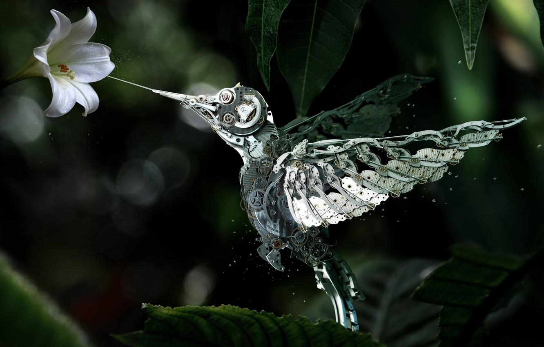 Photo wallpaper flower, mechanism, robot, Hummingbird