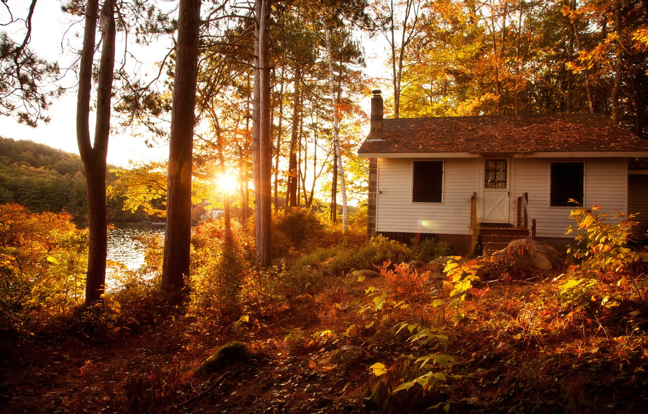 Photo wallpaper autumn, forest, the sun, trees, landscape, sunset, Villa, home, Nature, house, forest, Nature, architecture, trees, …