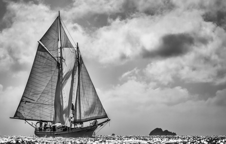 Photo wallpaper sea, photo, yacht, sails, black and white, regatta