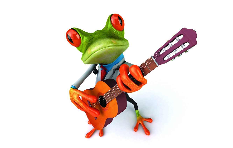 Photo wallpaper frog, guitar, frog, funny