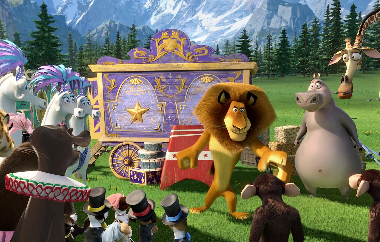 Photo wallpaper animals, cartoon, circus, MADAGASCAR 3