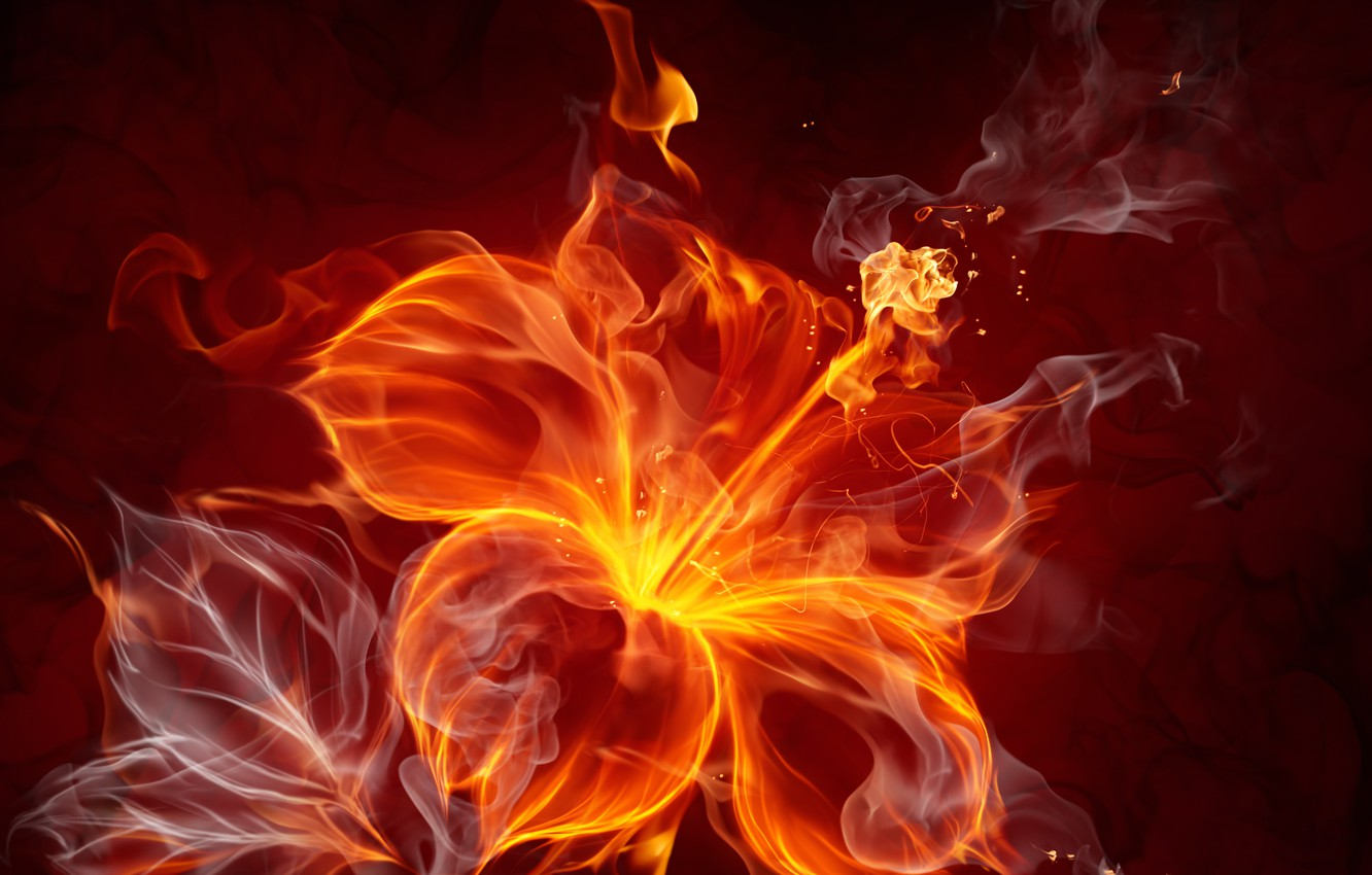 Photo wallpaper flower, abstraction, fire