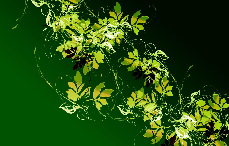 Photo wallpaper leaves, light, pattern, plant, color, contrast, Liana