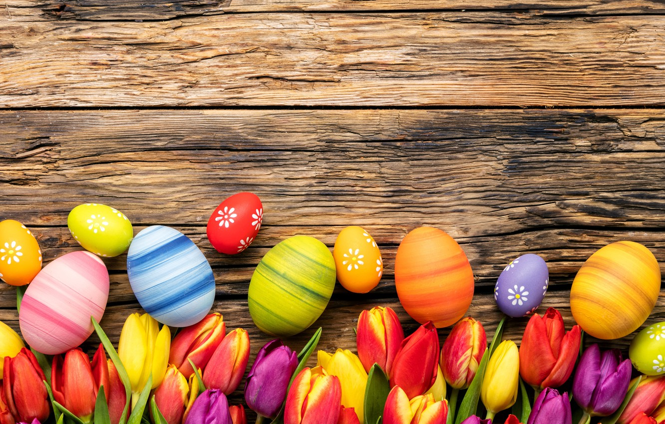 Photo wallpaper flowers, eggs, spring, colorful, Easter, tulips, wood, flowers, tulips, spring, Easter, eggs, decoration, Happy
