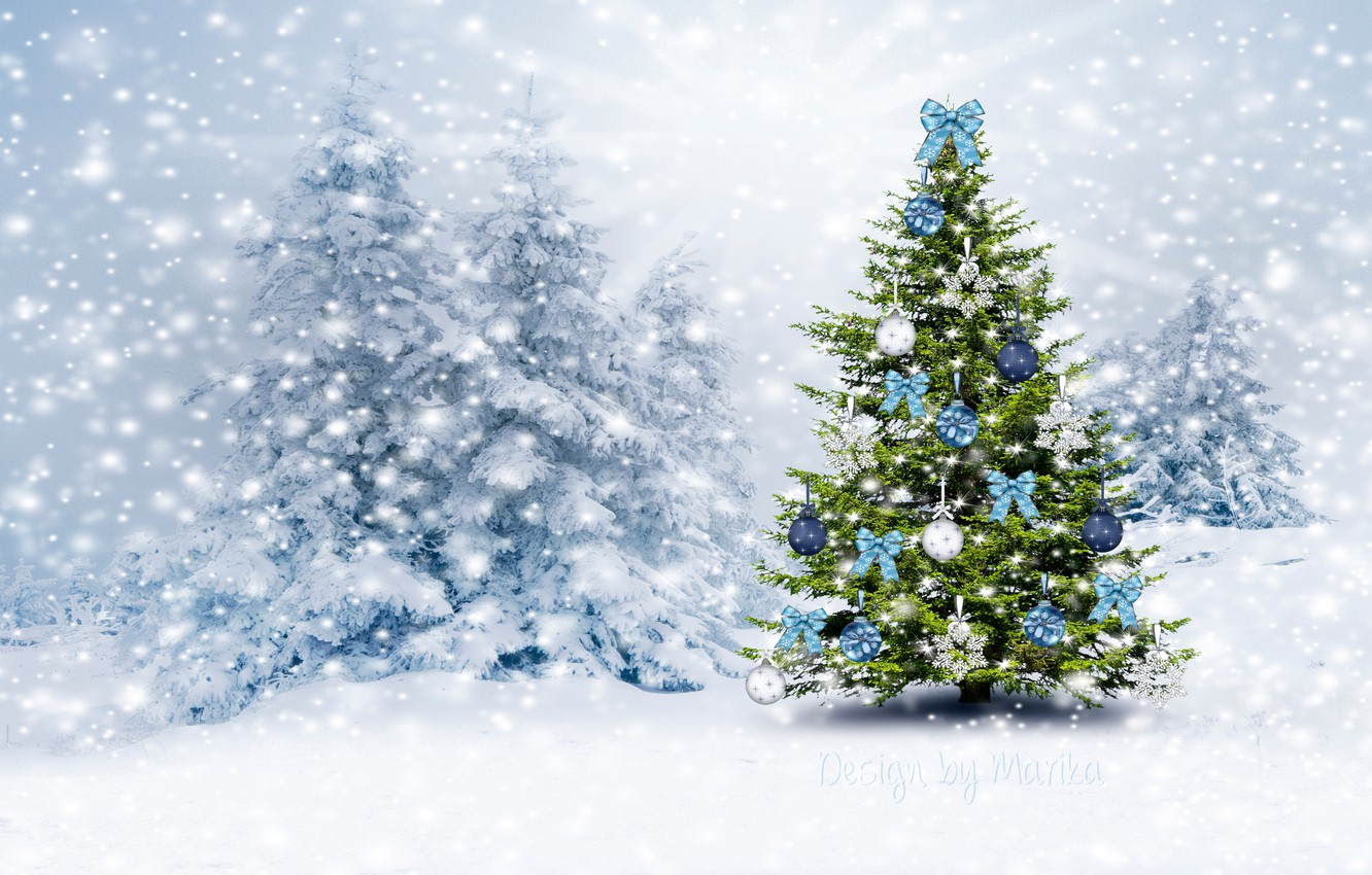 Wallpaper Winter Forest Snow Tree Christmas New Year