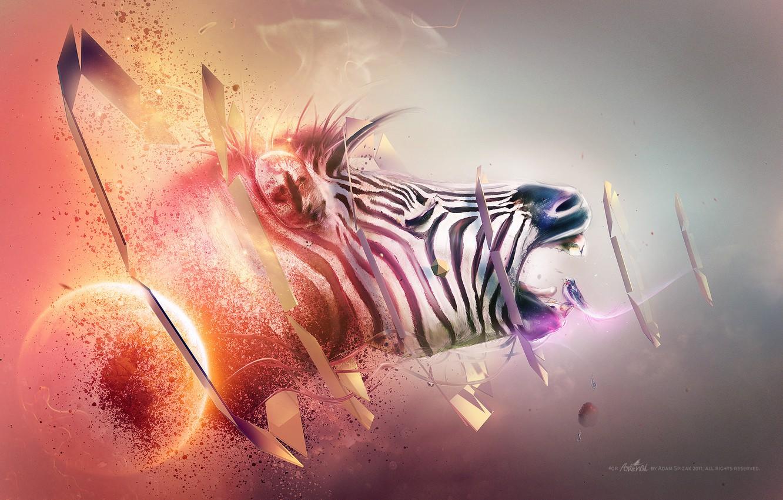 Photo wallpaper red, white, black, blue, orange, abstraction, purple, zebra, gray