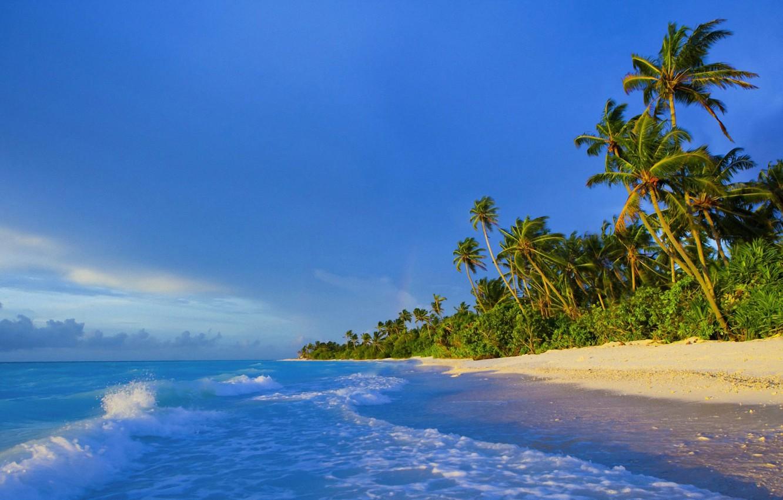 Photo wallpaper palm trees, shore, The Maldives