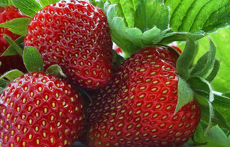 Photo wallpaper macro, berries, strawberry, fruit